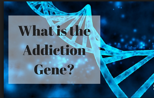 Addiction Gene?